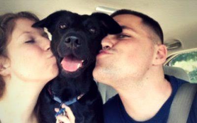 Music-loving pup helps Marine Corps veteran transition to civilian life